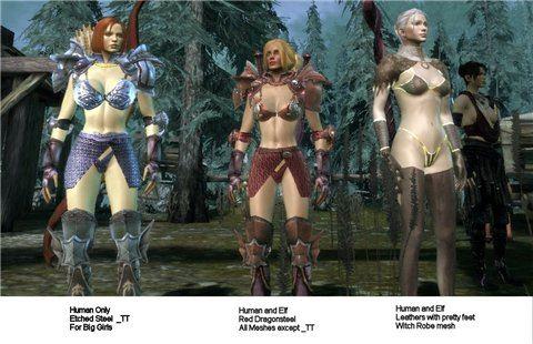 Женская Броня / Armory для Dragon Age: Origins