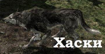 Реплейсер псов для TES V: Skyrim