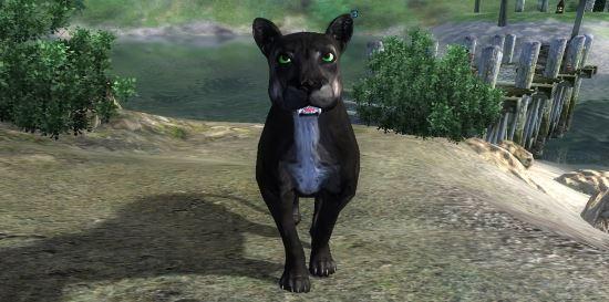 Компаньонка Багира для TES IV: Oblivion