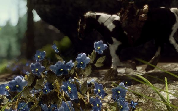 Mountain Flower by Mari - Горноцвет от Mari v 1.2 для TES V: Skyrim