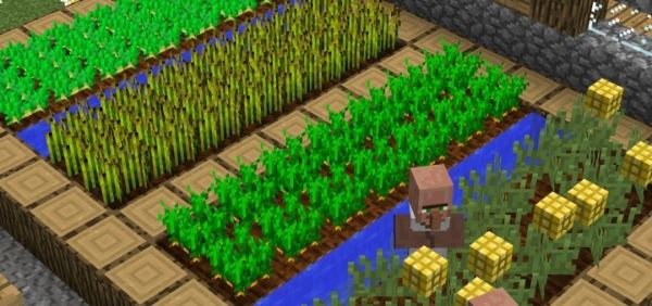 Grow-able Corn and Edible Popcorn для Minecraft 1.8.8