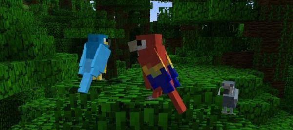 Exotic Birds для Minecraft 1.8