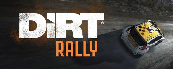 NoDVD для DiRT Rally v 1.1