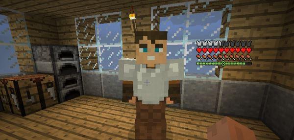 Companions для Minecraft 1.8