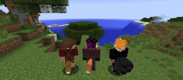 Tails для Minecraft 1.9