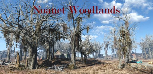 Ноанет Вудлэндс для Fallout 4