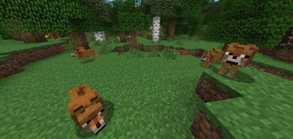 Doge для Minecraft 1.8