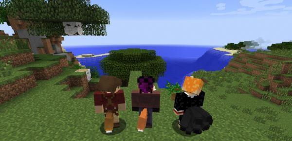 Tails для Minecraft 1.9.4