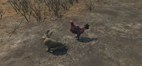 Commonwealth Chickens and Rabbits / Курицы и кролики Содружества v 1.05 для Fallout 4