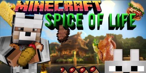 The Spice of Life для Майнкрафт 1.10.2