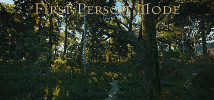 First person mode (Вид от первого лица) v 1.04 для Ведьмак 3