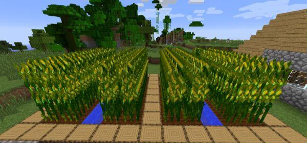 Simply Corn для Майнкрафт 1.10