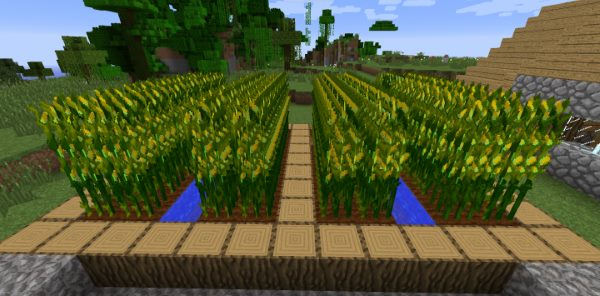 Simply Corn для Майнкрафт 1.11.2