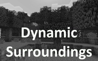 Dynamic Surroundings для Майнкрафт 1.12