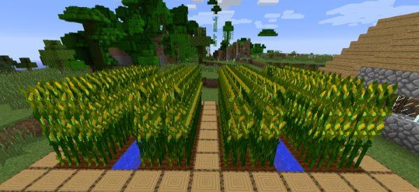 Simple Corn для Майнкрафт 1.12.2