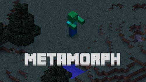 Metamorph для Майнкрафт 1.12.2