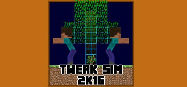 Twerk Sim для Майнкрафт 1.12.2