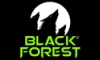 Spellbound Entertainment восстала из пепла в качестве Black Forest Games