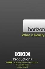BBC: Что такое реальность? (2011) HDRip
